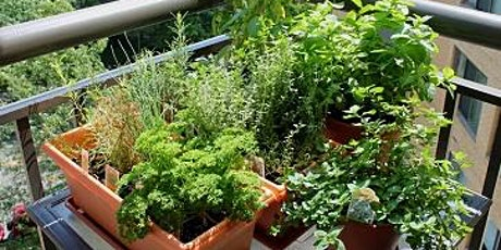 Food Production in Small Vegetable Gardens tickets