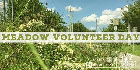 Managed Meadow Volunteer Day tickets
