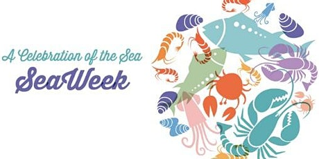 SeaWeek Reef Ramble - Aldinga tickets
