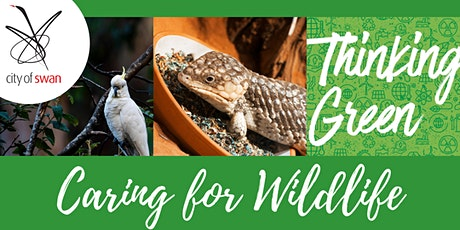 Thinking Green: Caring for Wildlife (Ellenbrook) tickets