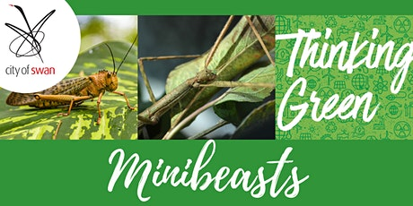 Thinking Green: Minibeasts (Midland) tickets
