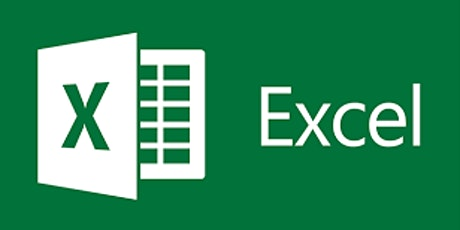 Data Management, Analysis and Visualization using Microsoft Excel tickets