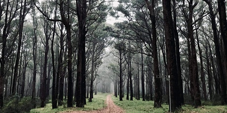 Range Road-Dandenong Creek Trail Loop on the 10th of March, 2021 tickets