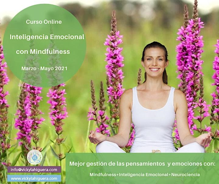 Imagen de Curso Mindfulness con Inteligencia Emocional  8 Semanas