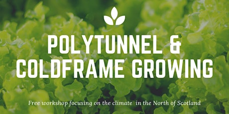 Polytunnel and Cold Frame Growing Workshop tickets
