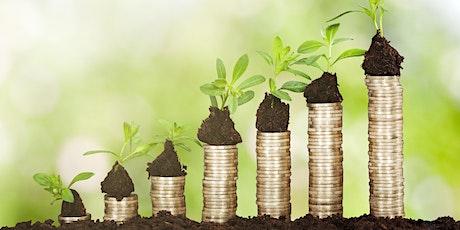 Webinar: Finanzierungs- und Fördermöglichkeiten digitaler Innovationen Tickets