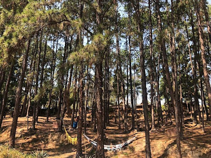 Imagem do evento Desconto para Day Use na Fazenda das Pedras, em Itu