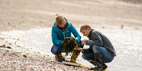 Online Applicant's Day | BSc (Hons) Marine Science SAMS UHI tickets