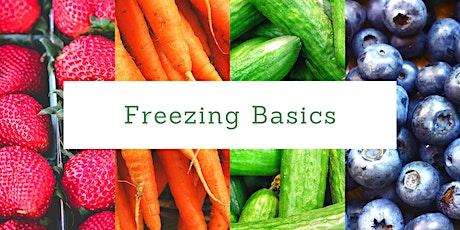 Home Food Preservation: Freezing Basics tickets