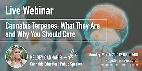 Cannabis Terpenes Live Webinar tickets