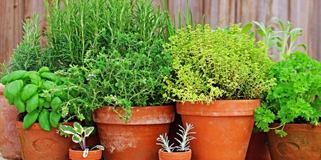 Growing & Using Herbs tickets