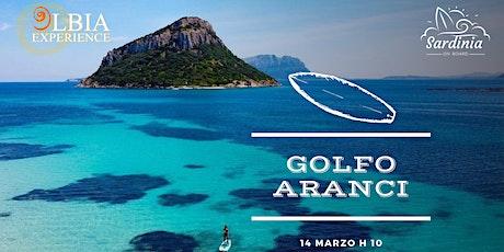 SUP Experience - Golfo Aranci biglietti