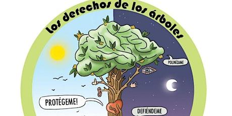 Día internacional del árbol entradas