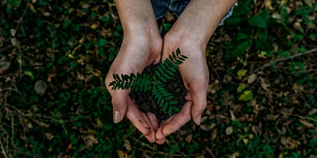 Bushcare and O.F.F (Oatley Flora and Fauna) Planting Day tickets