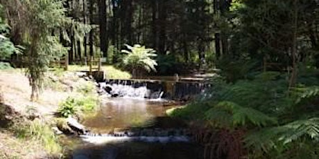 Maroondah Reservoir to  Donnelly's Weir on the 29th of March, 2021 tickets