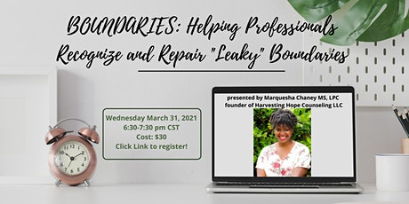 """Boundaries: Helping Professionals Recognize and Repair """"Leaky"""" Boundaries tickets"""