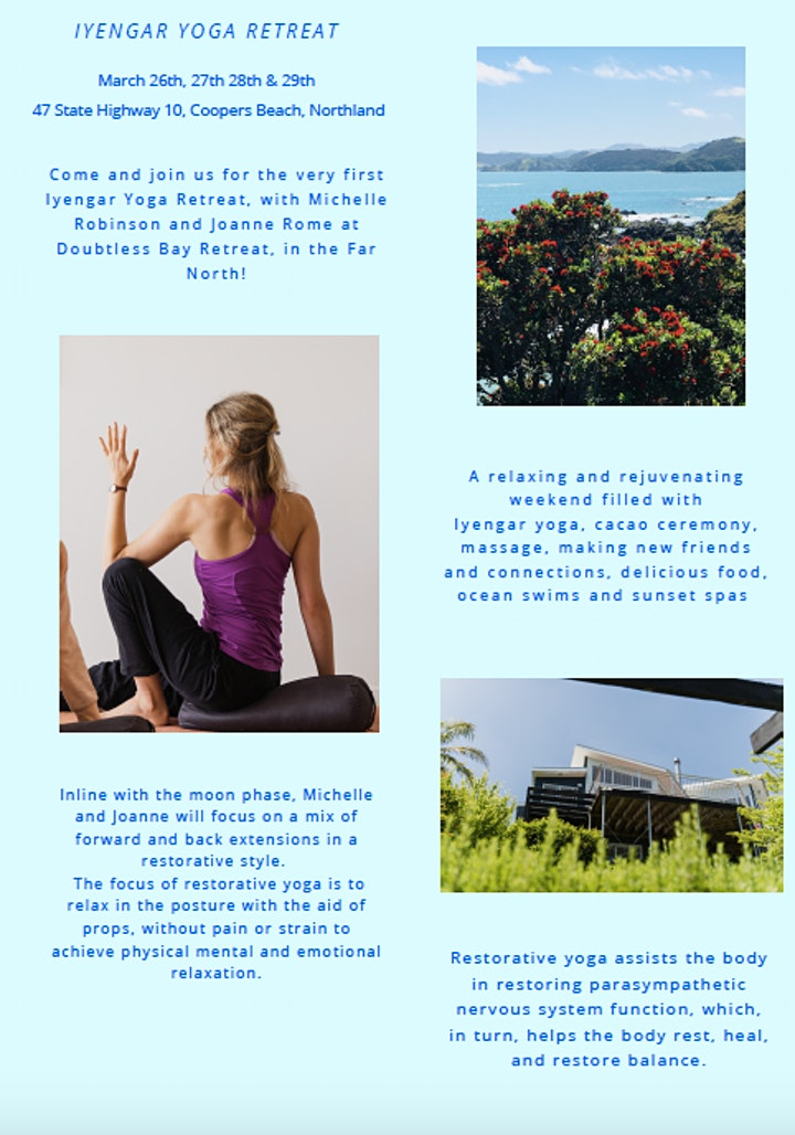 Iyengar Yoga Retreat image