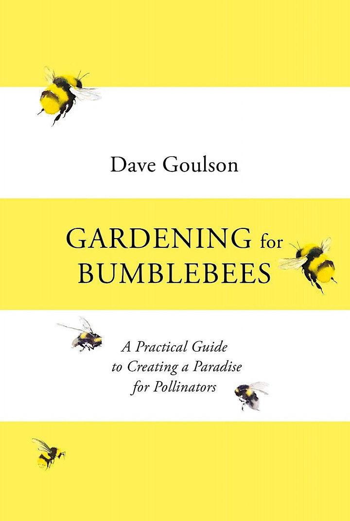 The Garden Jungle - a talk by Dave Goulson image
