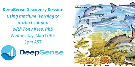 DeepSense Discovery Session ~ Using machine learning to protect salmon tickets