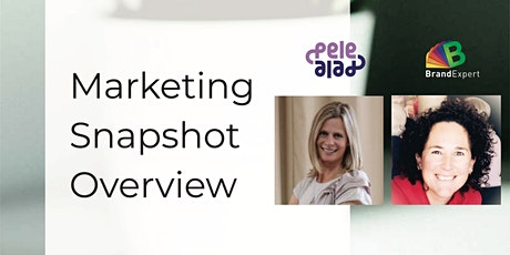 Marketing MasterClass - Introduction to The Marketing Snapshot tickets