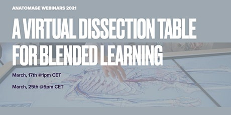 A virtual dissection Table for blended learning billets