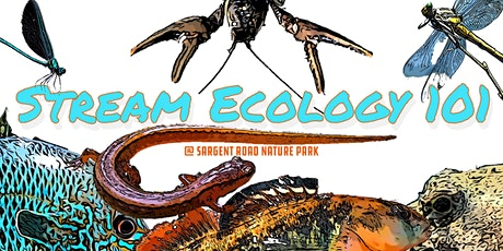 Stream Ecology 101 @ Sargent Road Nature Park tickets