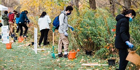 Youth 4 the Credit - Volunteer Tree Planting tickets