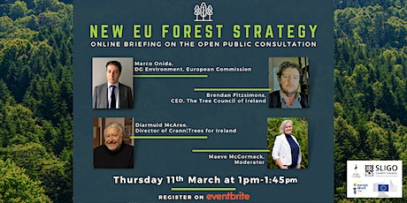 Webinar on The new EU Forest Strategy  Public  Consultation Process tickets