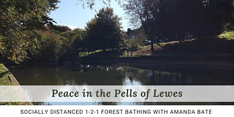 Forest bathing ~ Peace in the Pells of Lewes tickets