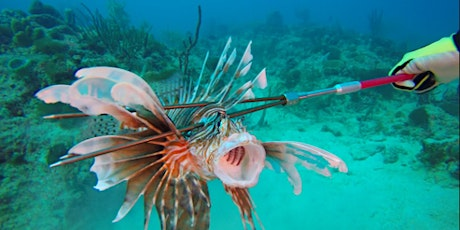 Miami Lionfish Tournament in Partnership with Austin's Dive Center tickets