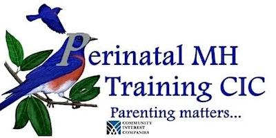 Awareness of Perinatal Mental Health – Online Course 3