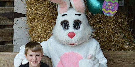 Easter Egg Hunt at the Christmas Tree Farm tickets