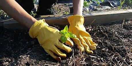 Building Healthy Soil tickets