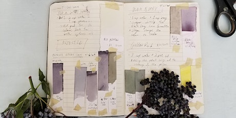 Plant Ink Extraction for Watercolours Workshop (Online) tickets