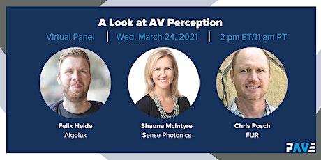 PAVE Virtual Panel: A Look at AV Perception tickets