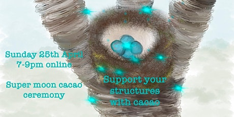 Support Your Structures with Cacao  – Super moon Cacao ceremony Tickets