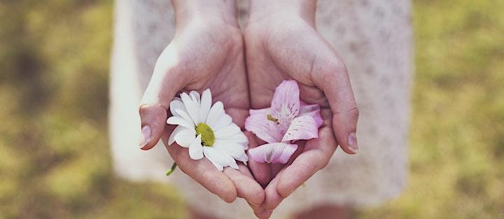 """Immagine Giornata di Consapevolezza """"Praticare la Gratitudine"""""""
