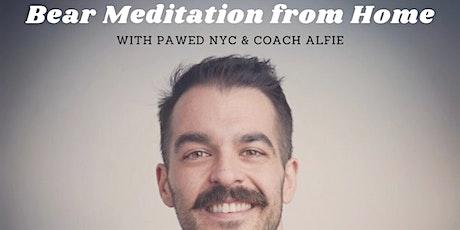 Bear Meditation: 30-min guided relaxation tickets