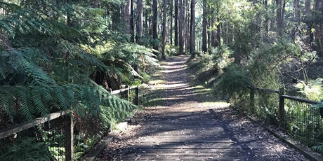 R.J. Hammer Arboretum Tree Trek on the 17th of March, 2021 tickets