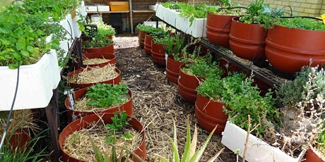 Wicking Bed Workshop with Shane Hunter tickets