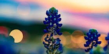 Wildflower Waltz tickets
