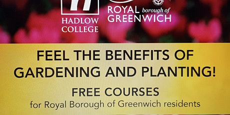 Introduction to Horticulture – Pruning plants- online zoom session tickets