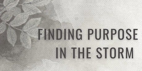 Finding PURPOSE  in the STORM tickets
