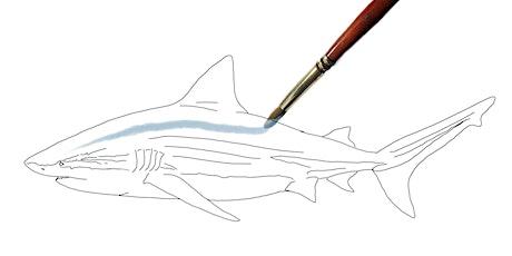 Creative Science: Paint by Science, Bull Shark bilhetes