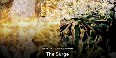 The Surge -  Ensemble Offspring - Concert - venue: the CORRIDOR project tickets
