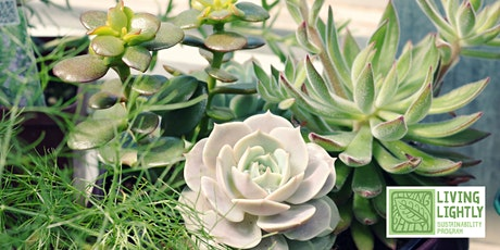 Succulents in your garden: FREE! Sustainable Living Workshop tickets