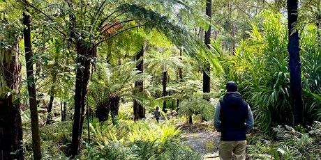 Mount Lofty Botanic Garden guided walk tickets