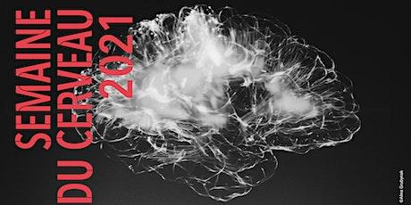 Cerveau multicompétent, apprenez à mieux le connaître ! biglietti