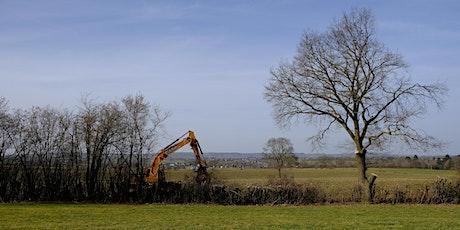 Valorisation du bois bocager dans l'Est de la Belgique billets