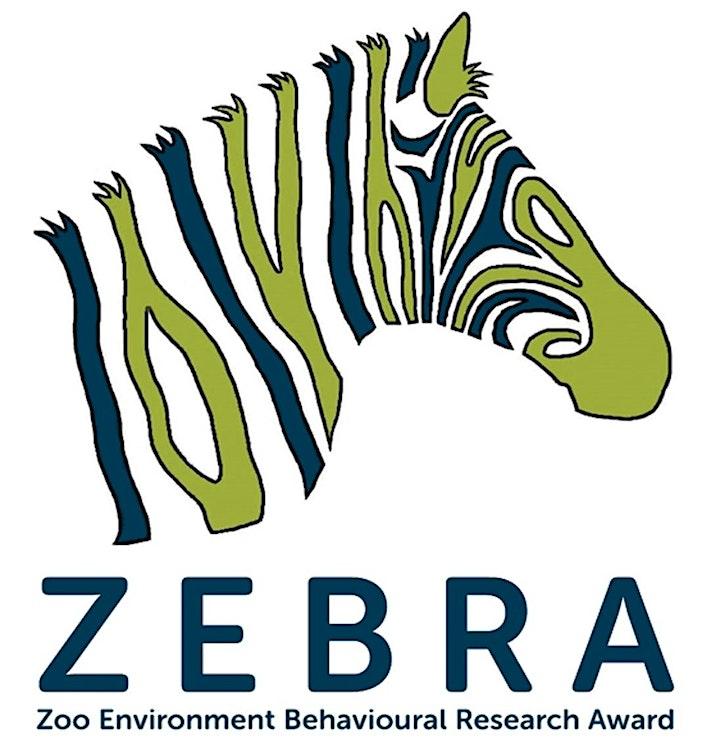 Zoo Studies (16-18) image